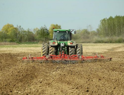 Velika Gorica subvencionira ekološku proizvodnju voća i povrća
